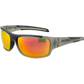 Alpina Testido Gafas, anthracite matt-black